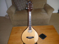 """""""Lewis"""" mandolin rosewood/spruce with pick-up and case superb"""