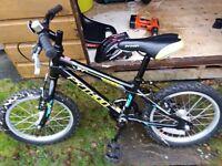 "Boy's Python Rock 16"" Bike (including stabilisers)"