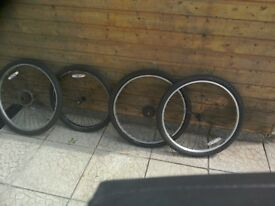 Wheels for mountain bike