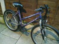 LADIES APOLLO 7100 MOUNTAIN BIKE, 26, ALLOY WHEELS, GOOD TYRES,