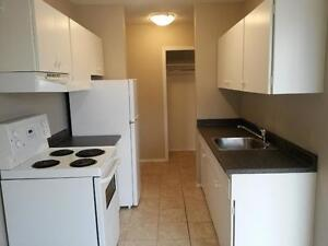 Nicely Renovated 3 Bdrm Suite!  Avail May 5th -   $1160/mth