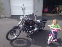 Harley Davidson soft tail springer 1996