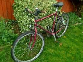 Sell bike