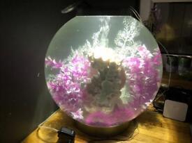 BIORB CLASSIC AQUARIUM ACRYLIC FISH TANK 60L - Refurbished Aquarium - Funky Fishkeeper