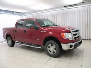 2014 Ford F-150 4X4 4DR 6PASS