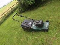 Hayter harrier 56 roller lawnmower petrol