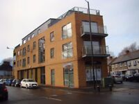 AWESOME PENTHOUSE ¦ 2 BED 2 BATH ¦ CANNING TOWN E16 ¦ PRIVATE ROOF TERRACE!