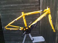 Junior Apollo Tempo Racing Bike Frame