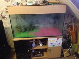 Fish tank with cupboard stand good condition with pump and filter £150