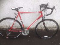 Viking Race. Male Road bike. Fully serviced, fully safe and ready to go.