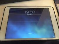 iPad mini 32 GB / touch screen not working / Can negotiate