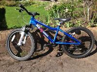 Ridgeback MX20 terrain kids mountain bike