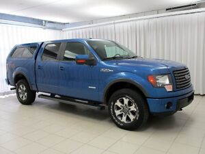 2012 Ford F-150 FX4 OFF ROAD 4X4 4DR WITH CAP
