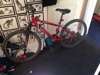 Bike new £100 ono