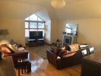 Room in Ardgrange apartment WiFi & full use of the apartment. Professionals only. £300 per month