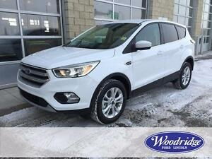 2017 Ford Escape SE HEATED SEATS, FOUR WHEEL DRIVE, BACKUP CAM