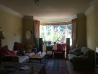 Large Double Room in great communal house