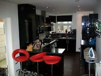 For rent is a two bed modern house situated on a very nice road in the tottenham/seven sisters area!