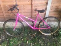 Ladies/Girls Hawk Trackatak 18 speed PINK mountain bike