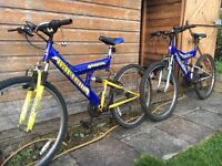 Bikes X 2