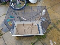 Bird Cage with accesories