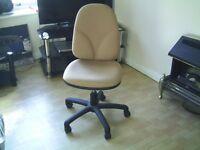 Light Weight Office Chair