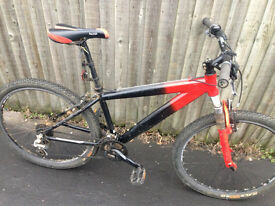 mountain bike red black Raleigh