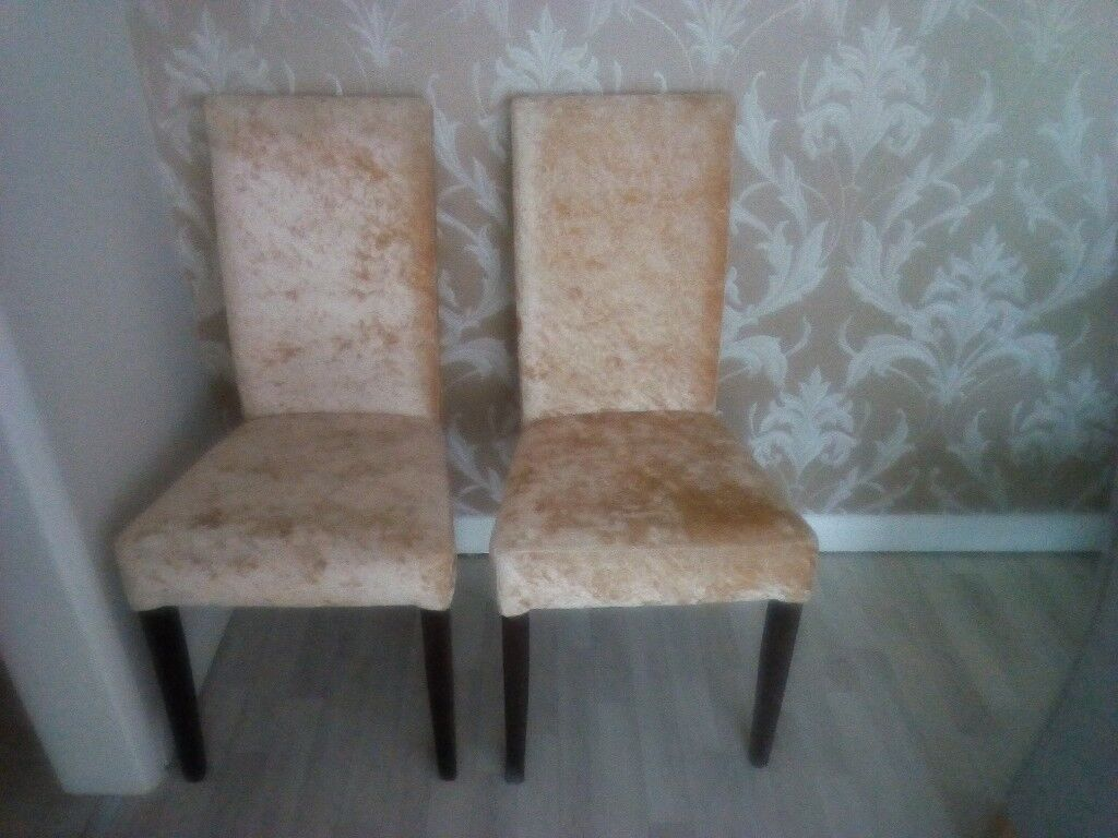 A nice gold crushed velvet dining chairs
