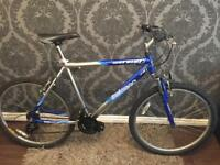 ADULT SALCANO MOUNTAIN BIKE