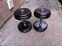 Dumbbells 2 x 22kg fixed