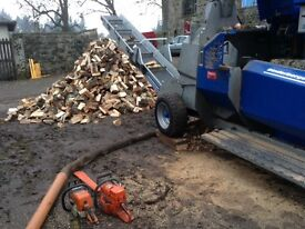 Binderberger wood processor log splitter