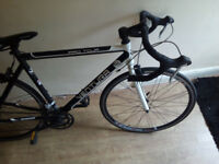 pro tour Ventura Bike Wery nice condition eweriting works perfeckt/nice cristmast present only 70£