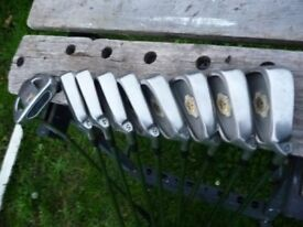 Full set of palm springs golf clubs with 3 woods and stand bag.