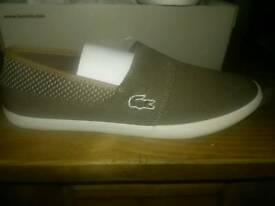 Brand new lacoste canvas shoes