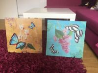 2 x butterfly canvas excellent condition
