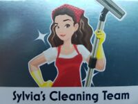 If you need a reliable cleaner I can help you