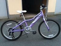 Childs Mountain Bike Giant Revel