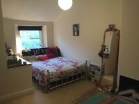 LOVELY ROOM CLIFTON/ LEIGH WOODS £393pcm. Friendly houseshare.