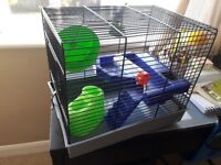 Russian hamster or mouse cage