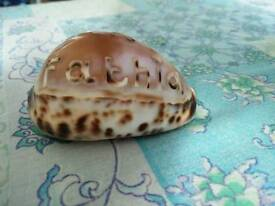 Engrave your name on seashells.