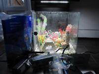 Super-Fish Wave 15 Fish Tank - TANK IS 15 LITRES