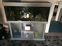 """for fish tank46""""width 21 """"depth s glass doors pump all accessories including 🐟 and food"""