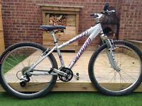 Ladies Specaliized Hardrock bike