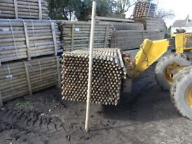 Timber fence post 60mmx2.4m