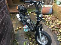 Moped 50cc project