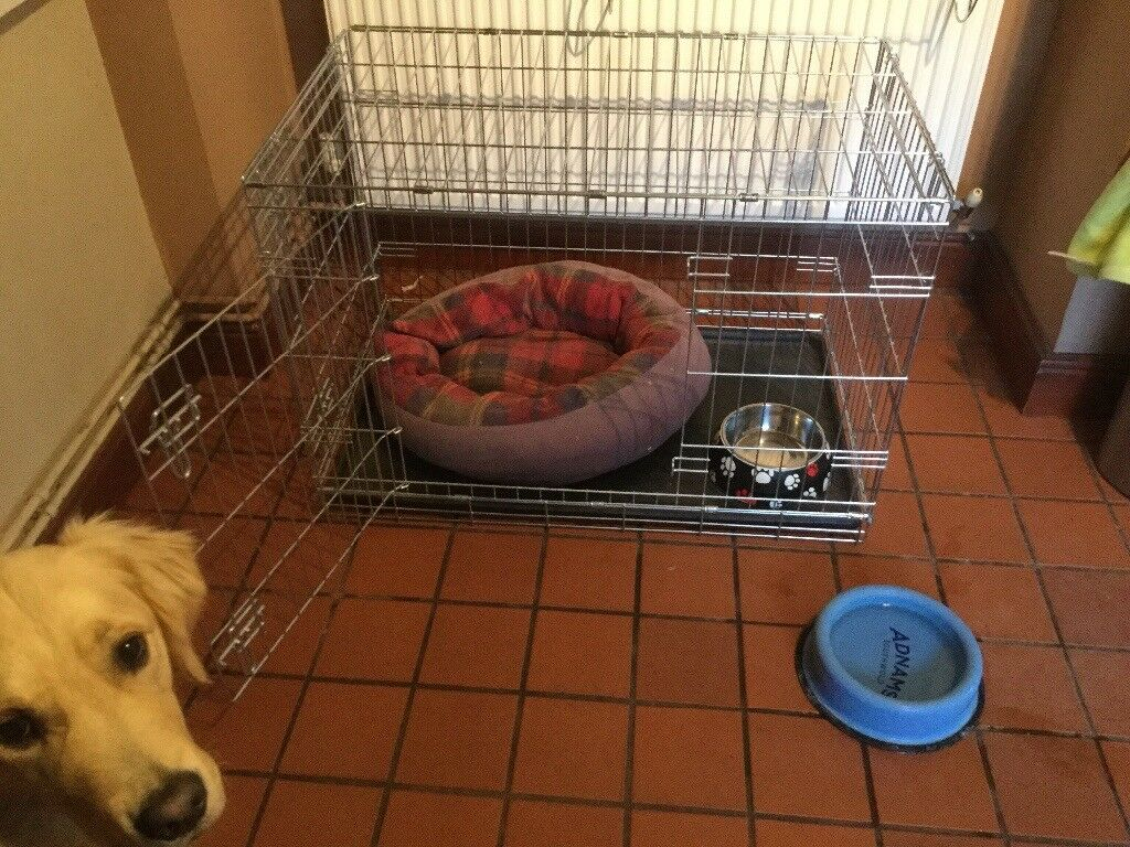 Dog crate for sale. Ideal for puppy training or comfy home for established dog