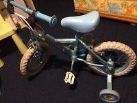bike 12 inch