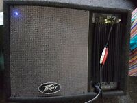 Peavey Pro Power 12 active Monitor
