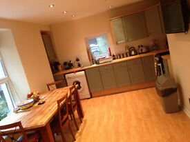 Large Room to Let in Clean Quiet House £375 PM