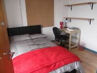 Well presented professional house share available in Treforest NOW